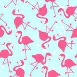 Seamless pattern with flamingos Stock Images
