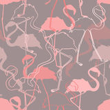 Seamless pattern of flamingos Royalty Free Stock Photography