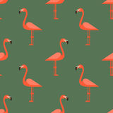 Seamless pattern with flamingos Royalty Free Stock Photo