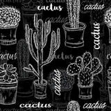 Seamless pattern with flat chalk board black and white illustration of succulent plants and cactuses in pots. Royalty Free Stock Photo
