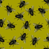 Seamless pattern of flies Stock Image
