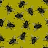Seamless pattern of flies stock image