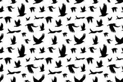 Seamless pattern with  flock of birds. Stock Photos