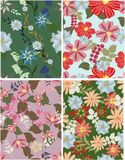 Seamless pattern floral Stock Photo