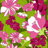 Seamless Pattern With Floral Background . Royalty Free Stock Photos