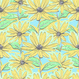 Seamless pattern floral chamomiles, Autumn flowers feverfew wallpaper, Hand-drawn daisies. Seamless pattern floral of chamomiles, Autumn flowers yellow feverfew Stock Images