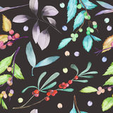 A seamless pattern with a floral forest elements: cranberry, wolfberry, mistletoe twigs, berry branches and leaves. Hand drawn on a dark background Royalty Free Stock Photography