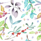 A seamless pattern with a floral forest elements: cranberry, wolfberry, mistletoe twigs, berry branches and leaves. Hand drawn on a white background Royalty Free Stock Images