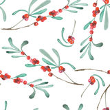 A seamless pattern with a floral ornament of the watercolor cranberry branches. On a white background Stock Photos