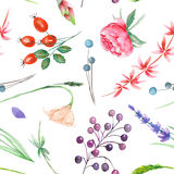 A seamless pattern with a floral ornament of the watercolor forest elements: berries, lavender, wildflowers and branches Stock Images