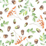 A seamless pattern with a floral ornament of the watercolor forest elements (oak acorns, rowan and branches) Royalty Free Stock Photography