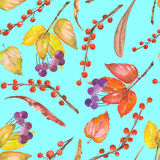 A seamless pattern with a floral ornament of the watercolor forest elements: red and yellow autumn leaves on the branches Stock Image