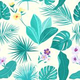 Seamless pattern floral. Vector background. Seamless pattern of leaves monstera. Tropical leaves of palm tree and flowers. Vector background Royalty Free Stock Photos