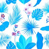 Seamless pattern floral. Vector background. Seamless pattern of leaves monstera. Tropical leaves of palm tree and flowers. Vector background Stock Photos
