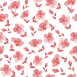 Seamless pattern. Stock Photography