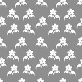 Seamless pattern with flovers Royalty Free Stock Images
