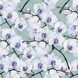 Seamless pattern of flower orchids Stock Photography