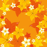 Seamless pattern flowers Royalty Free Stock Photography