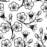 Vector Seamless pattern with flowers. Vector Seamless pattern with flowers and buds on a white background Royalty Free Stock Photo