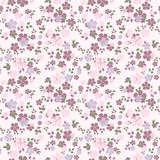 Seamless pattern with flowers. Stock Image