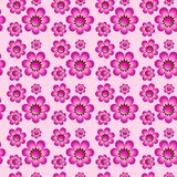 Seamless pattern with flowers. Seamless accurate pattern with floral design. Illustrations Stock Photos