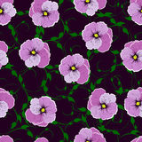 Seamless pattern, flowers against a dark background. Royalty Free Stock Image