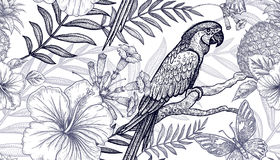 Seamless pattern flowers and birds. royalty free illustration