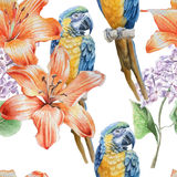 Seamless pattern with flowers and birds. Royalty Free Stock Photos