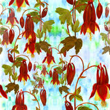 Seamless pattern. Flowers, buds and leaves - drawing by watercolor. Aquilegia.Watercolor background. Abstract wallpaper with flor Royalty Free Stock Photography