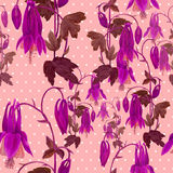Seamless pattern. Flowers, buds and leaves - drawing by watercolor. Aquilegia.Watercolor background. Abstract wallpaper with flor Stock Photography