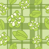 Seamless  pattern with flowers, buds. Royalty Free Stock Image