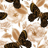 Seamless pattern of flowers and butterflies. Flowers roses and butterflies on white background. Vector seamless pattern. Floral design in oriental style Stock Photos