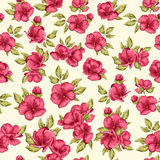 Seamless pattern flowers. Cherry blossom. Stock Images