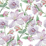 Seamless pattern with flowers. Clematis. Rose. Alstroemeria. Watercolor illustration. Stock Images