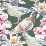 Seamless pattern with flowers and doves. Stock Photos
