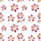 Seamless pattern with flowers of dried petals on white background. Seamless pattern with flowers of dried petals on white vector illustration