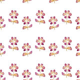 Seamless pattern with flowers of dried petals on white background. Seamless pattern with flowers of dried petals on white stock illustration