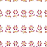 Seamless pattern with flowers of dried petals on white background. Seamless pattern with flowers of dried petals on white royalty free illustration