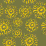 Seamless pattern of flowers gerbera on the green background Stock Photography