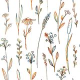Seamless pattern with flowers and grass Royalty Free Stock Photography