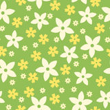 Seamless pattern with flowers on green. Stock Photos