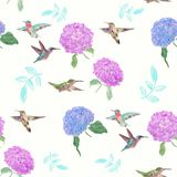 Seamless  pattern with flowers and hummingbirds. Watercolor on white background Royalty Free Stock Photos