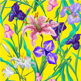 Seamless pattern with flowers. Iris. Lily. Vector. Hand drawn. Bright yellow Stock Photos