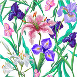 Seamless pattern with flowers. Iris. Lily. Vector. Hand drawn. Royalty Free Stock Photo