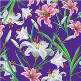 Seamless pattern with flowers. Iris. Lily. Vector. Hand drawn. Violet background Royalty Free Stock Images