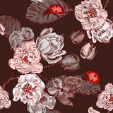 Seamless pattern with flowers and ladybird Stock Image