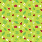 seamless pattern with flowers and ladybirds. Stock Photos