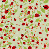 Seamless pattern with flowers and ladybirds Royalty Free Stock Photos