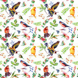 Seamless pattern with flowers, leaves, and birds. Royalty Free Stock Photos