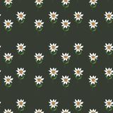 Seamless pattern with a flowers and leaves. Seamless pattern with daisies on green background stock illustration